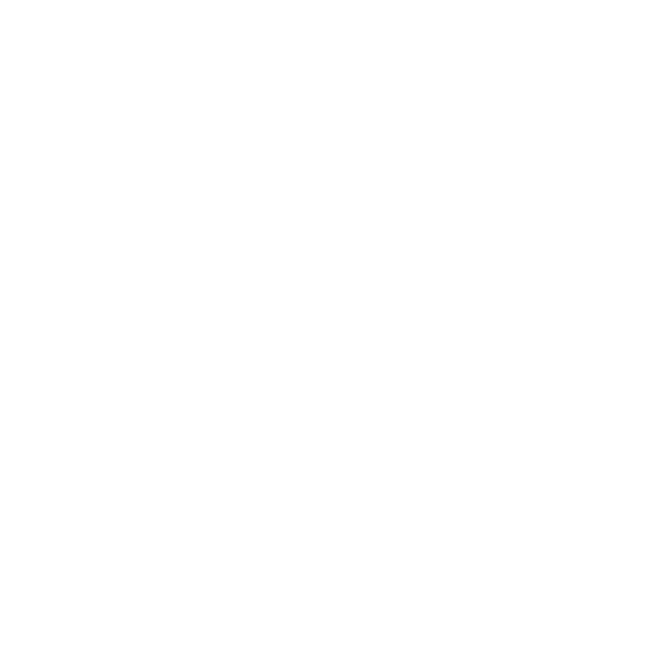 wordpress custom site